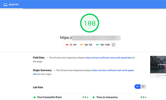 Check Speed Score - WP Rocket Plugin to Reduce Render-Blocking JavaScript and CSS